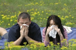 Приступ пневмонии