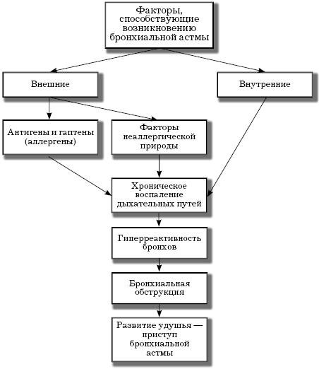формы бронхиальной астмы: