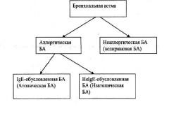 Виды бронхиальной астмы
