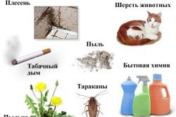 Факторы внешней среды, влияющие на течение и обострение бронхальной астмы
