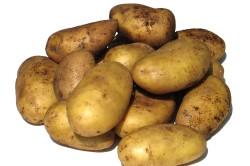 Польза картофеля при бронхите