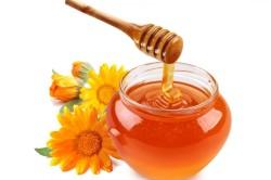 Мед для лечения бронхита
