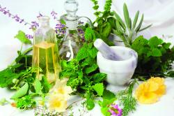Лекарственные растения для лечения острого бронхита