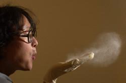 Вред пыль при бронхиальной астме