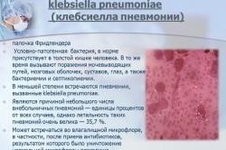 Симптомы клебсиеллы пневмонии