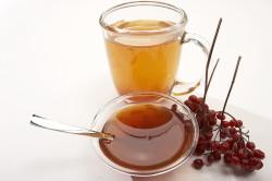 Мед с калиной для лечения обструктивного бронхита