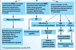 Диагностика и терапия бронхита
